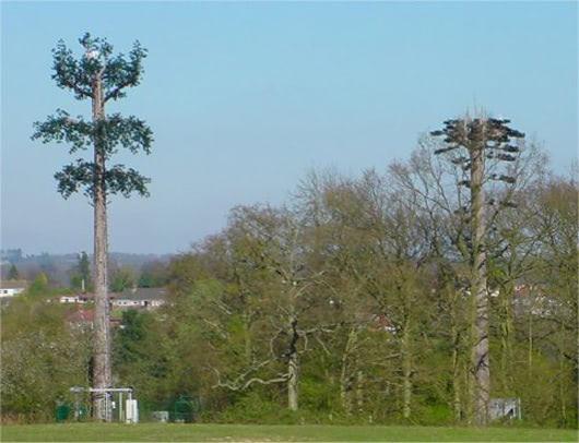 Visual of Cellphone Treemasts