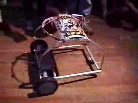 Visual of Cockroach Controlled Mobile Robot