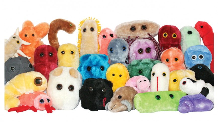 Visual of Giant Plush Microbes