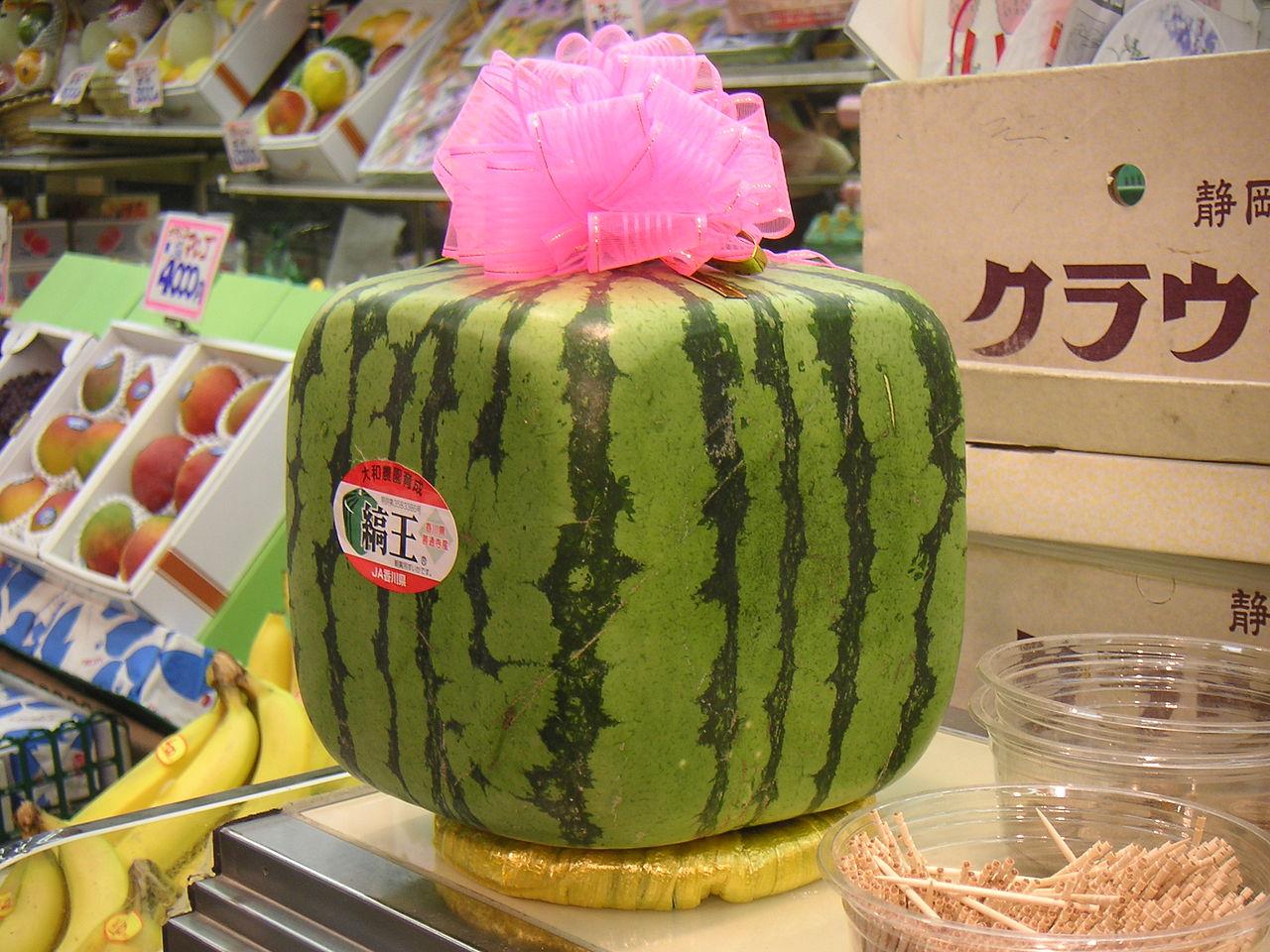Visual of Modernistic Watermelon