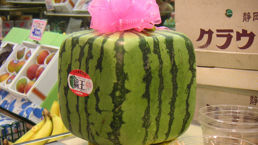 Visual of Modernistic Watermelon