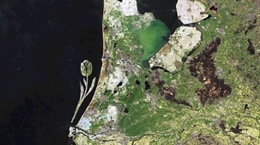 Visual of Tulip Island - Design a Polder