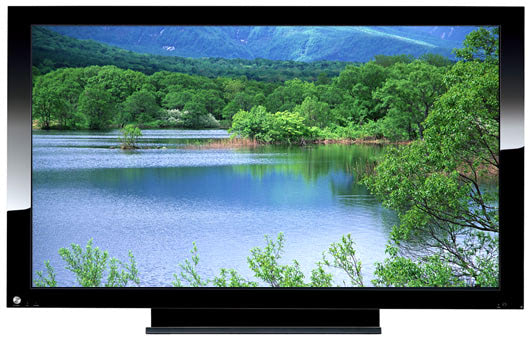 Visual of Flatscreen TV Now Required for Survival?