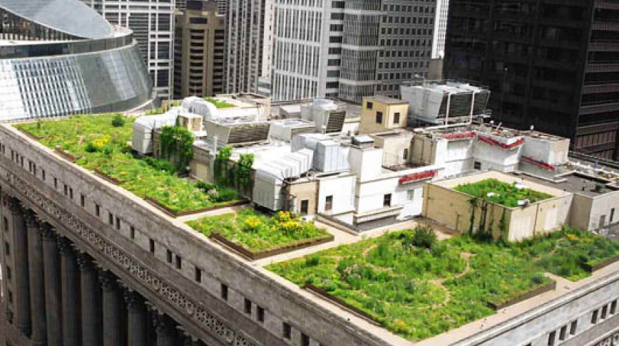 Visual of Green Roofs for Living