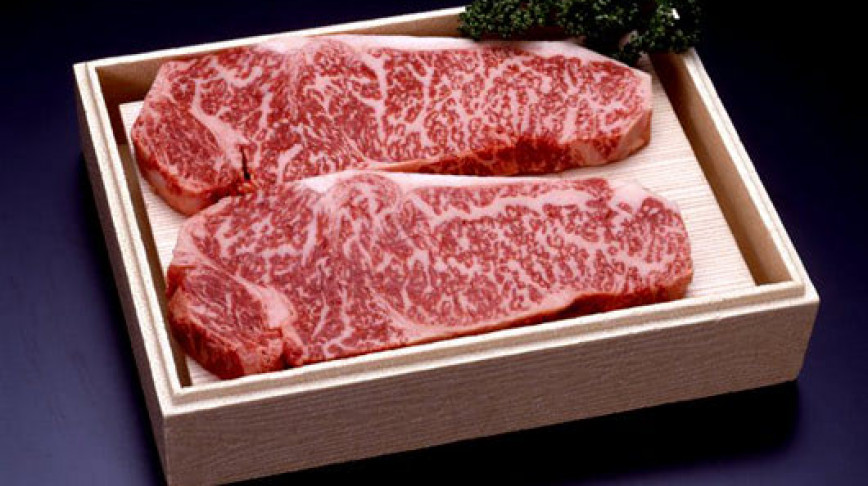 Visual of Forefather Ox cloned to revive delicious Steak