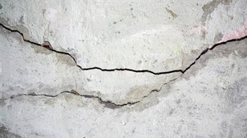 Visual of Engineered Bacteria heal Cracks in Walls