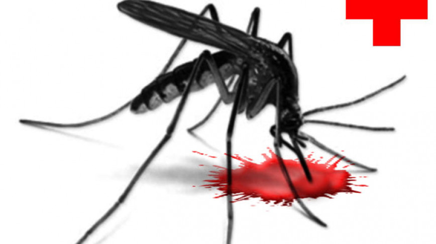 Visual of Engineering Mosquitoes into Flying Vaccinators