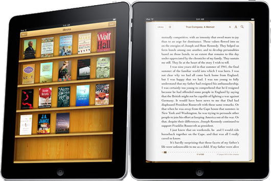 Visual of iBookshelf: Simulation before Extinction