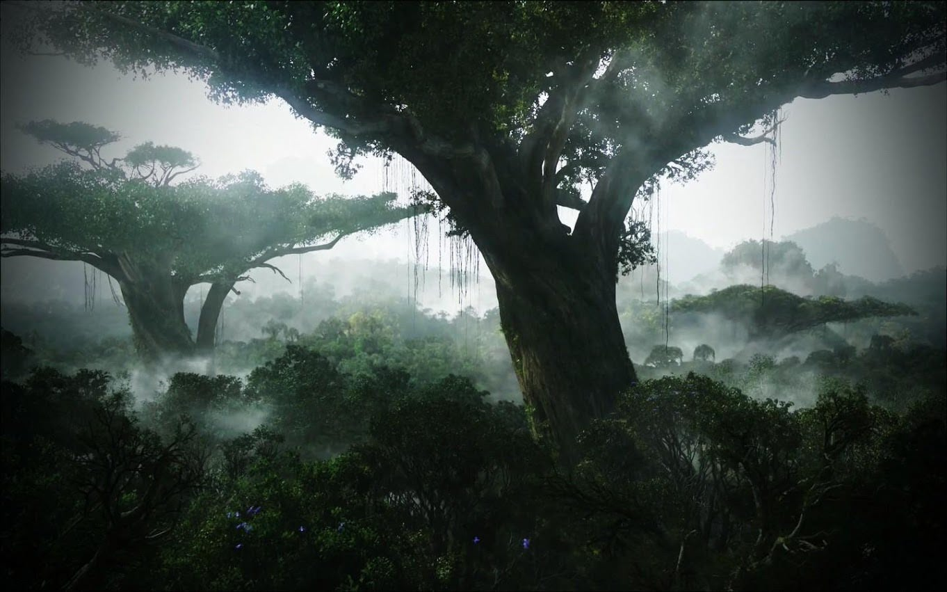 Visual of Lets Grow an Avatar Forest