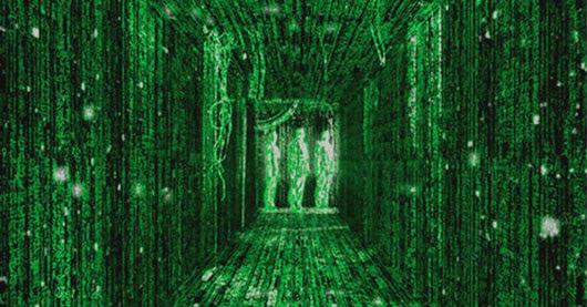 Visual of Next Nature Movie #6: The Matrix