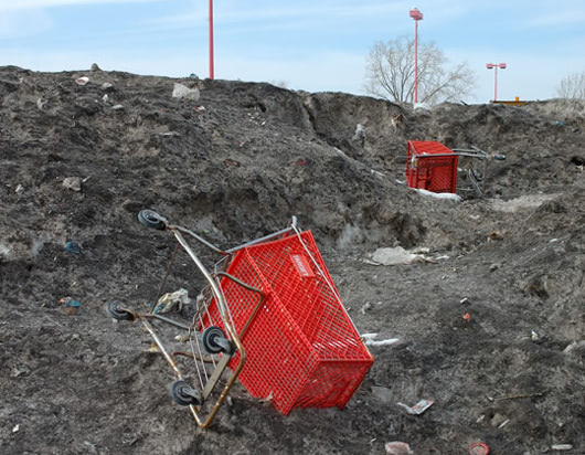 Visual of The Stray Shopping Cart Project