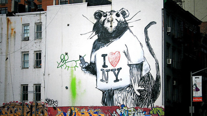 Visual of City Rats Love Ethnic Food