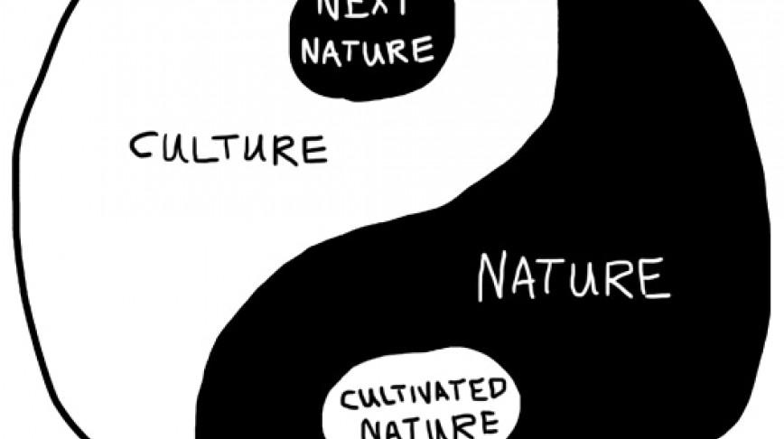 Visual of Napkin Sketch