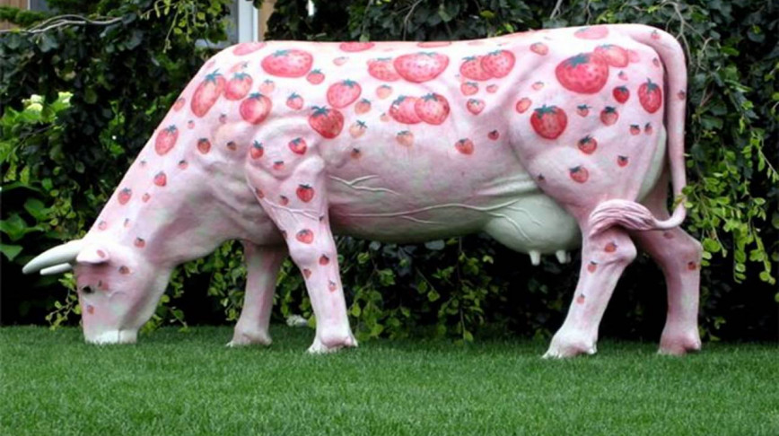 Visual of Strawberry Cow