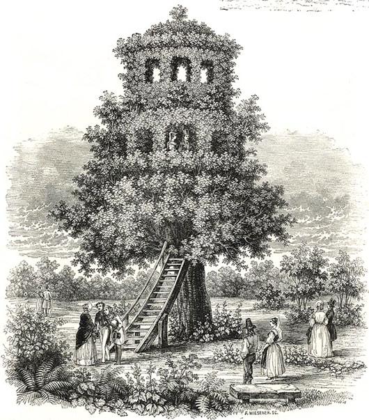 Visual of Tree Temple