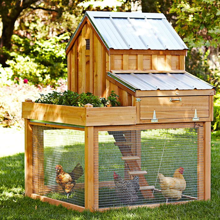 Visual of A €1,174 Chicken Coop for the Bourgeois Farmer