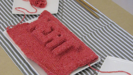 Visual of Eating In-Vitro: Knitted Meat