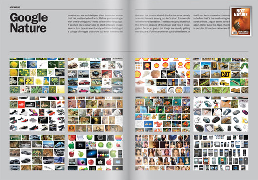 Visual of Featured Page #02: Google Nature