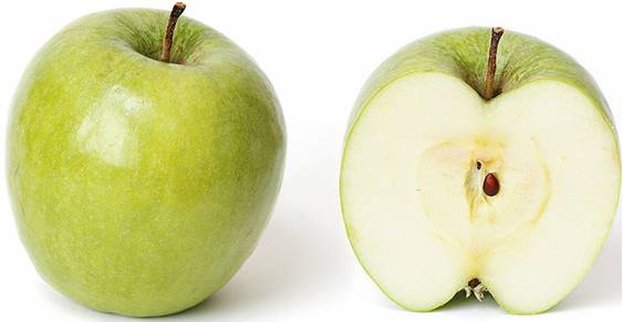 """Visual of Genetically Engineered """"Arctic"""" Apple Will Never Turn Brown"""
