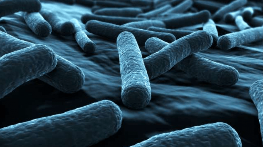Visual of GM Bacteria Turn Carbon Dioxide into Biofuel
