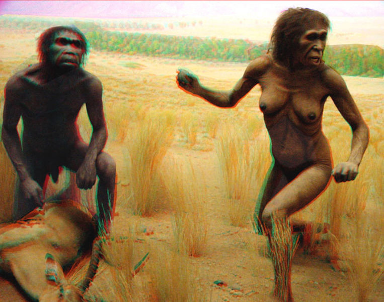 Visual of Humans Caused Mass Extinctions Before There Were Even Humans