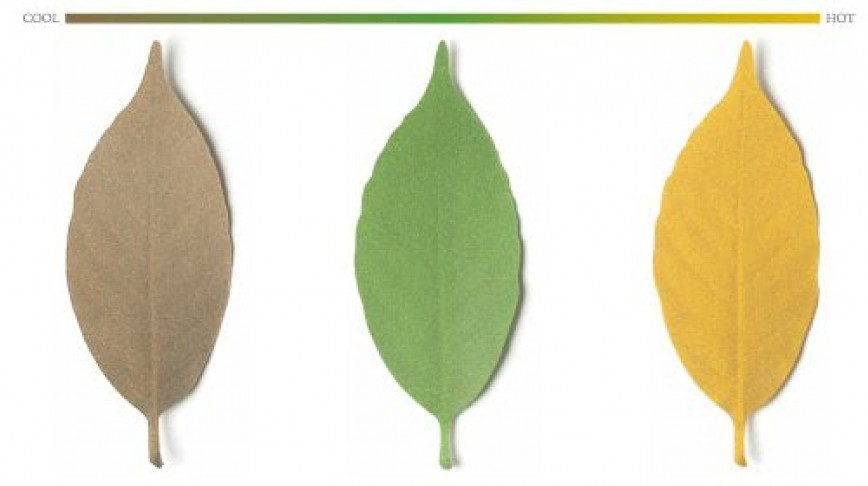 Visual of Leaf Thermometer
