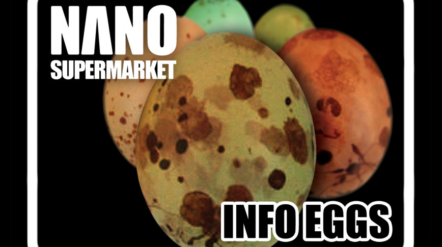 Visual of Nano Product: Honest Egg
