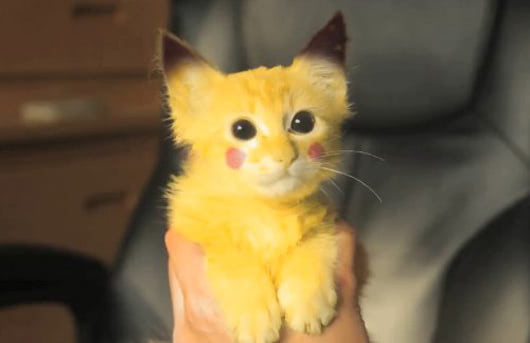 Visual of Pikachu Pussy