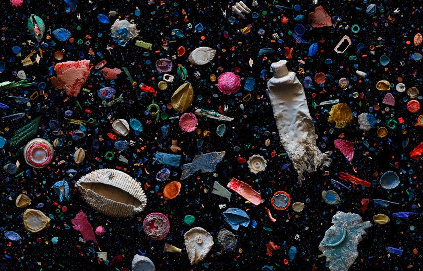 Visual of Plastic Junk Helps Ocean Animals (Sometimes)