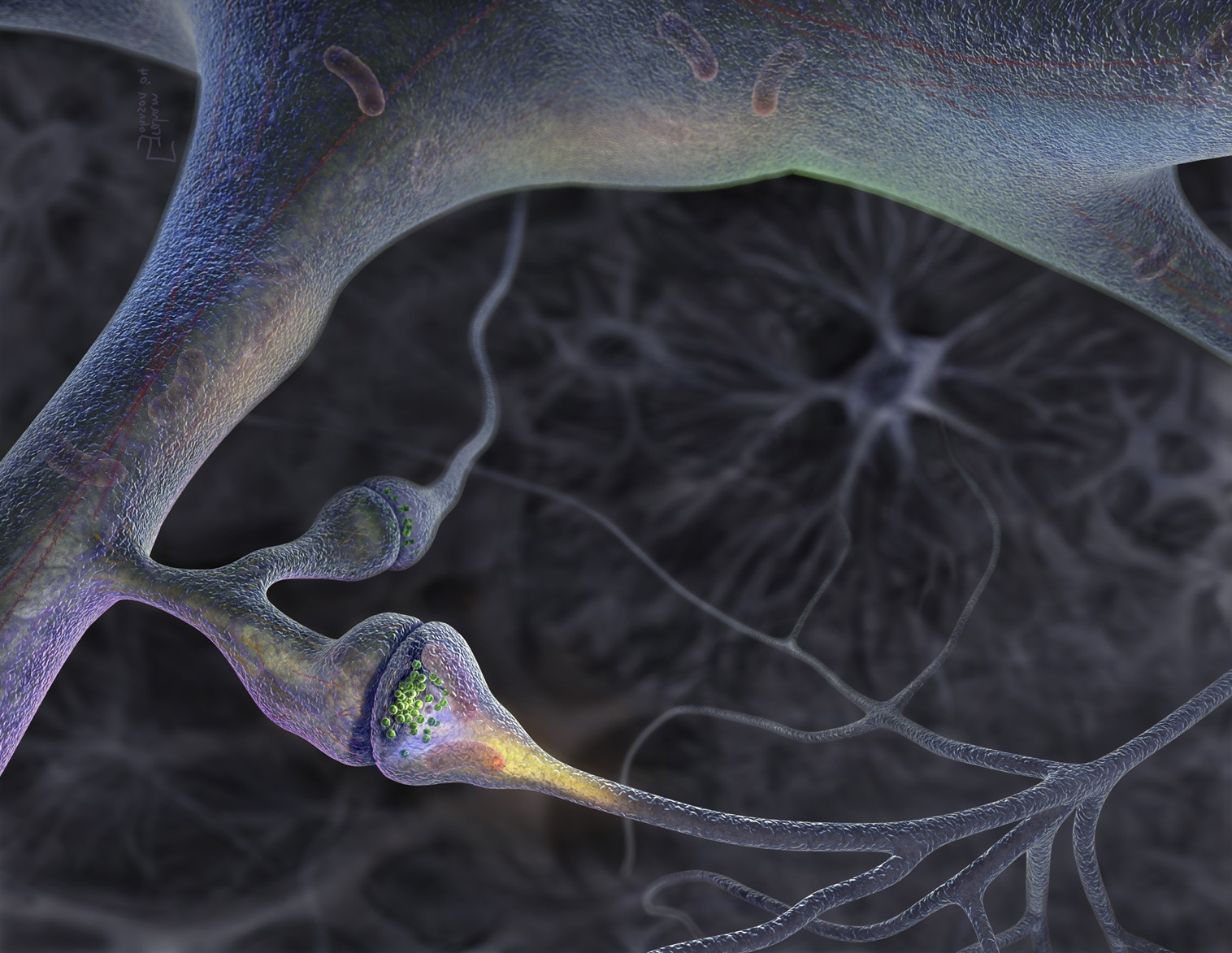 Visual of Replacing Synapses with a Single Switch