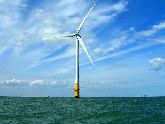Visual of Turning Wind Farms into Seaweed Farms