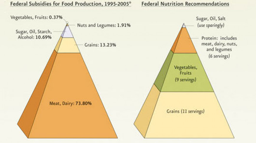 Visual of Why does a Salad Cost More Than a Big Mac?