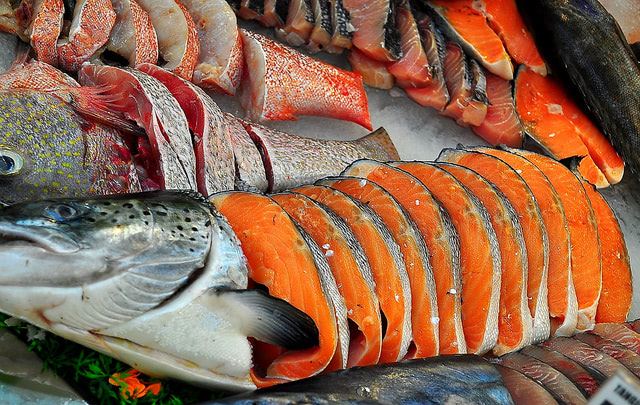 Visual of 33% of All Seafood in the United States Is Fraudulently Labeled