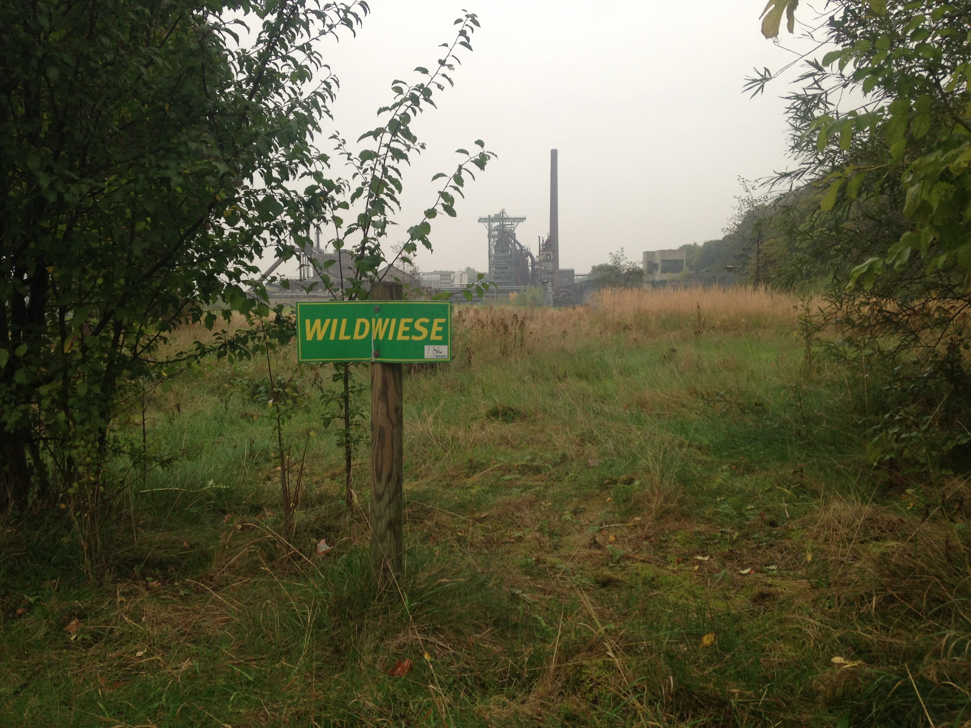 Visual of Anthropo-scene #5: Industrial Wilderness