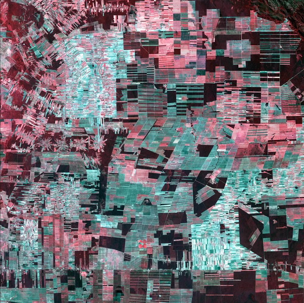 Visual of Anthropocene Art – Amazon Abstraction