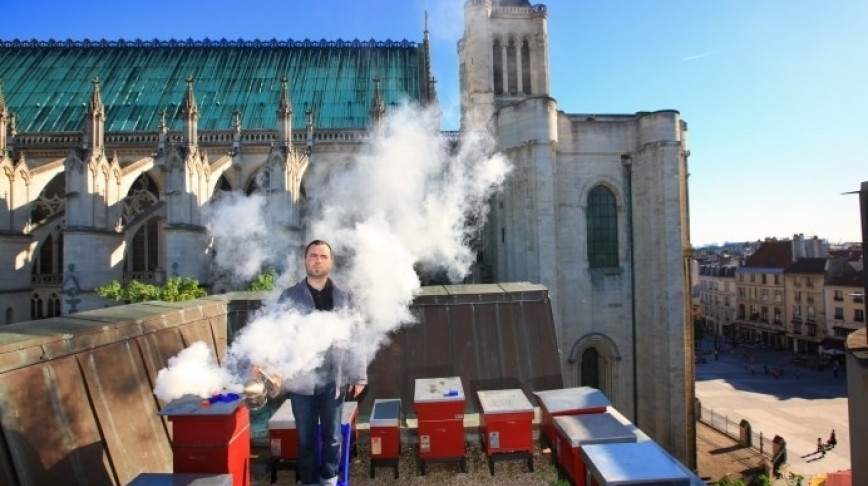 Visual of High-Priced Honey from Parisian Rooftops
