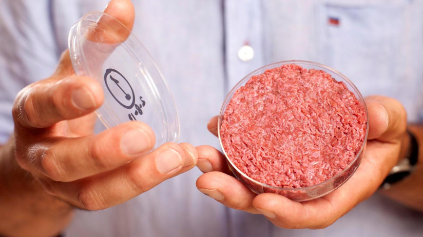 Visual of Moments in Meat History Part IX - In-Vitro Meat