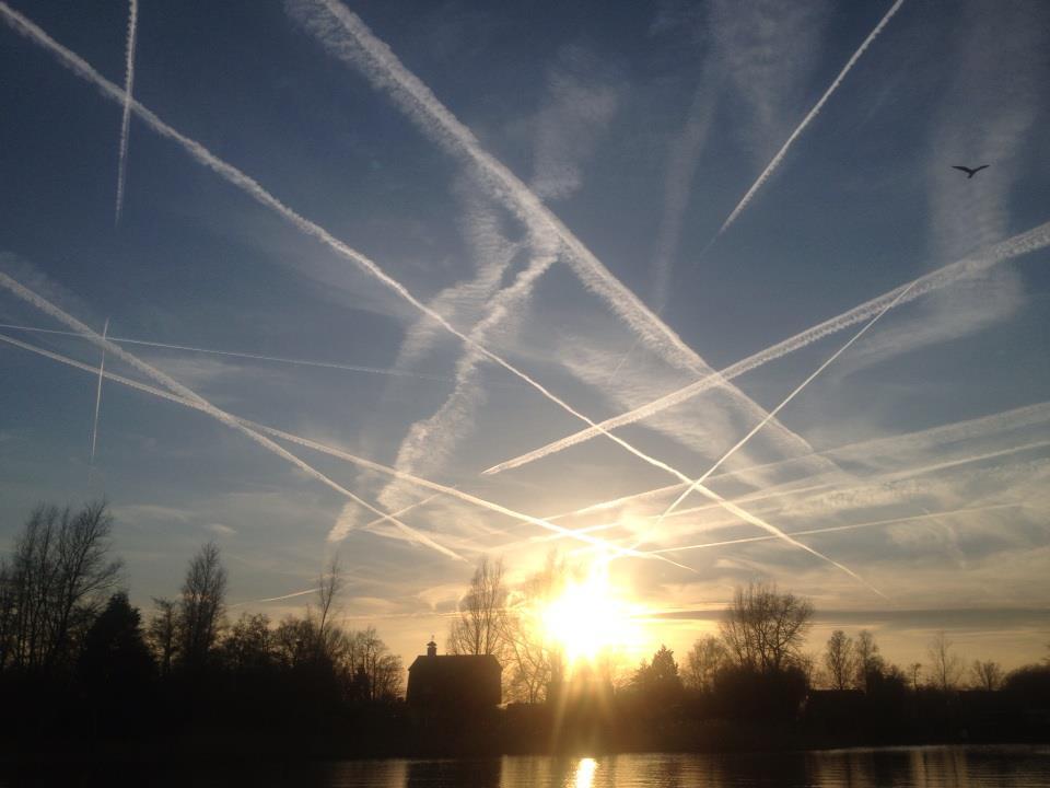 Visual of Nextnatural Sky