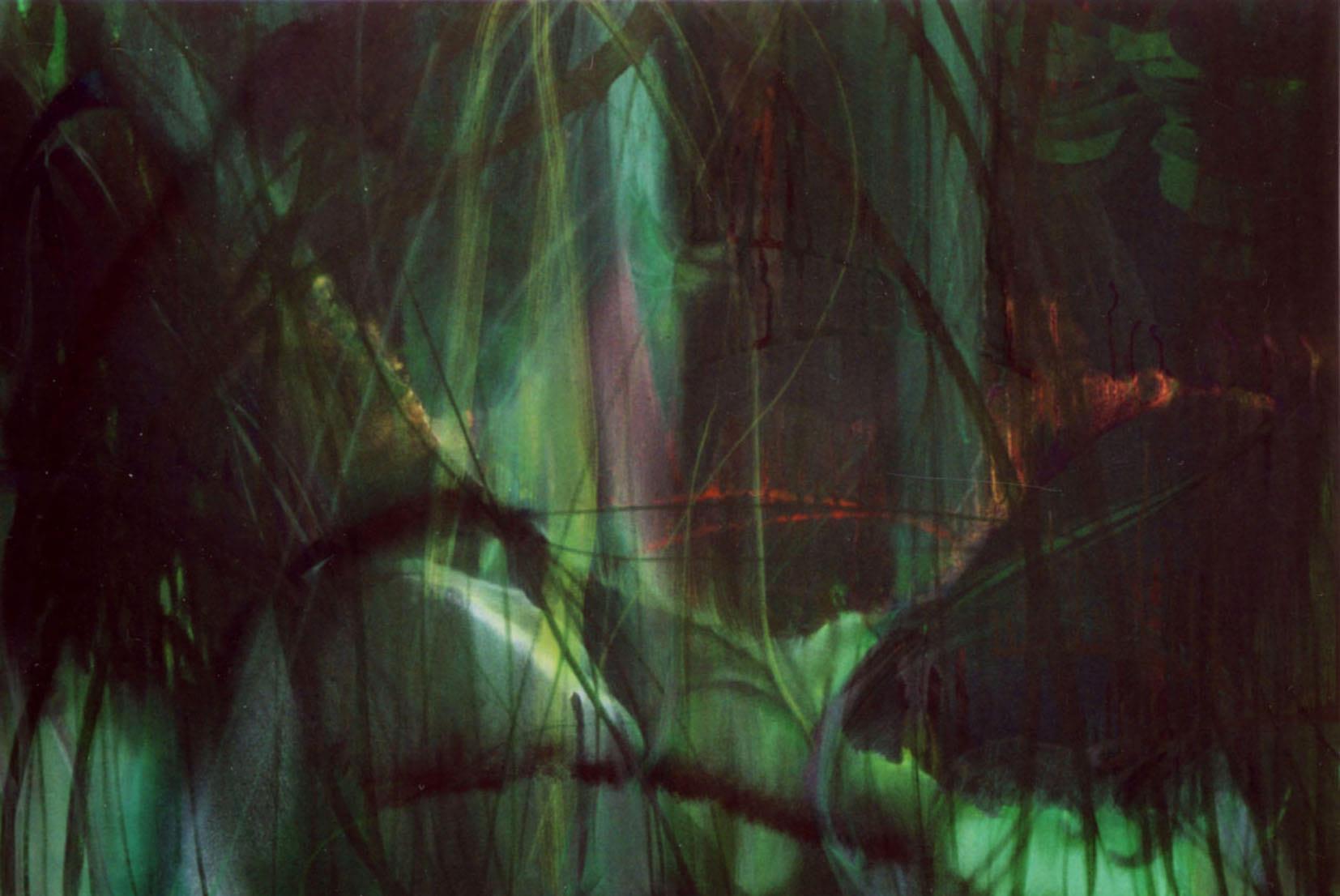 """Visual of Werner Herzog on """"Old"""" Nature"""