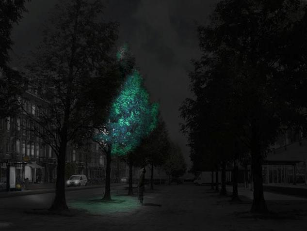 Visual of Glow in the Dark Trees