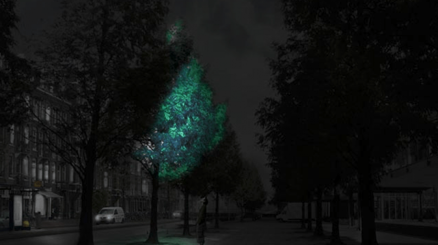 Visual of Glow in the Dark Trees