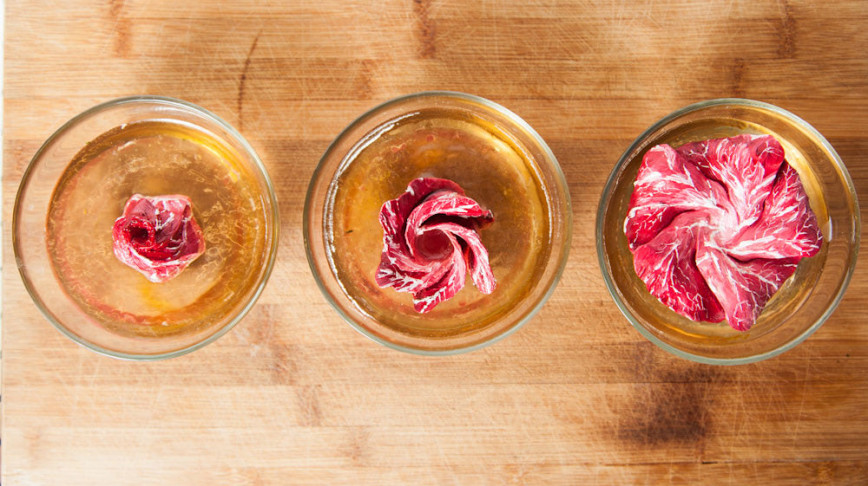 Visual of In Vitro Recipe #12: Meat Flowers