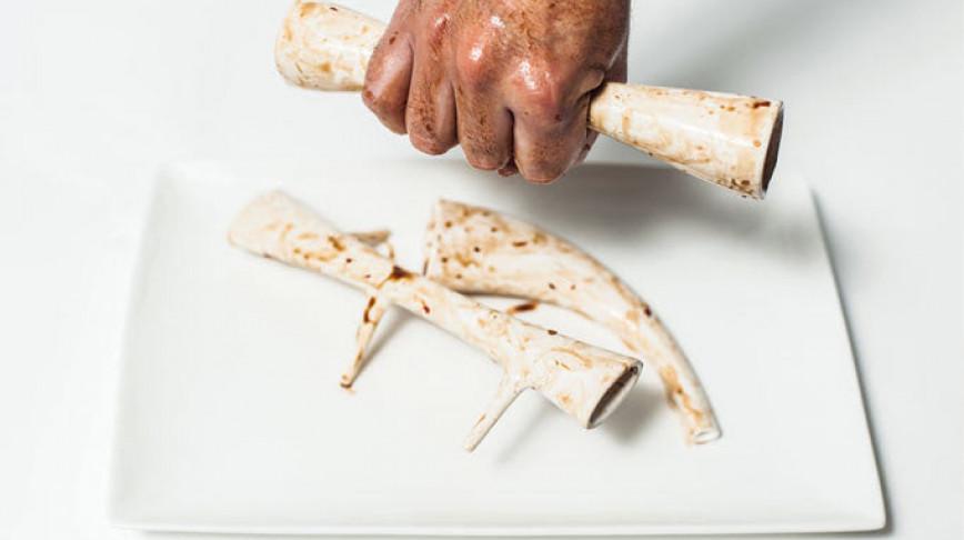 Visual of In Vitro Recipe #8: Bone Pickers