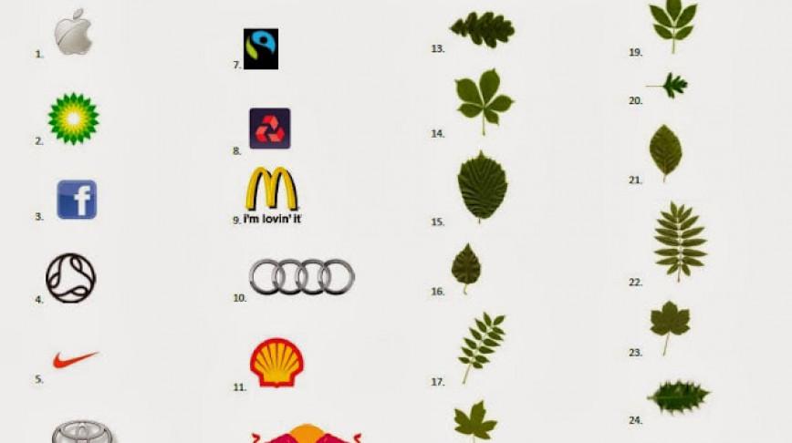 Visual of Leaves & Logos Identification Quiz