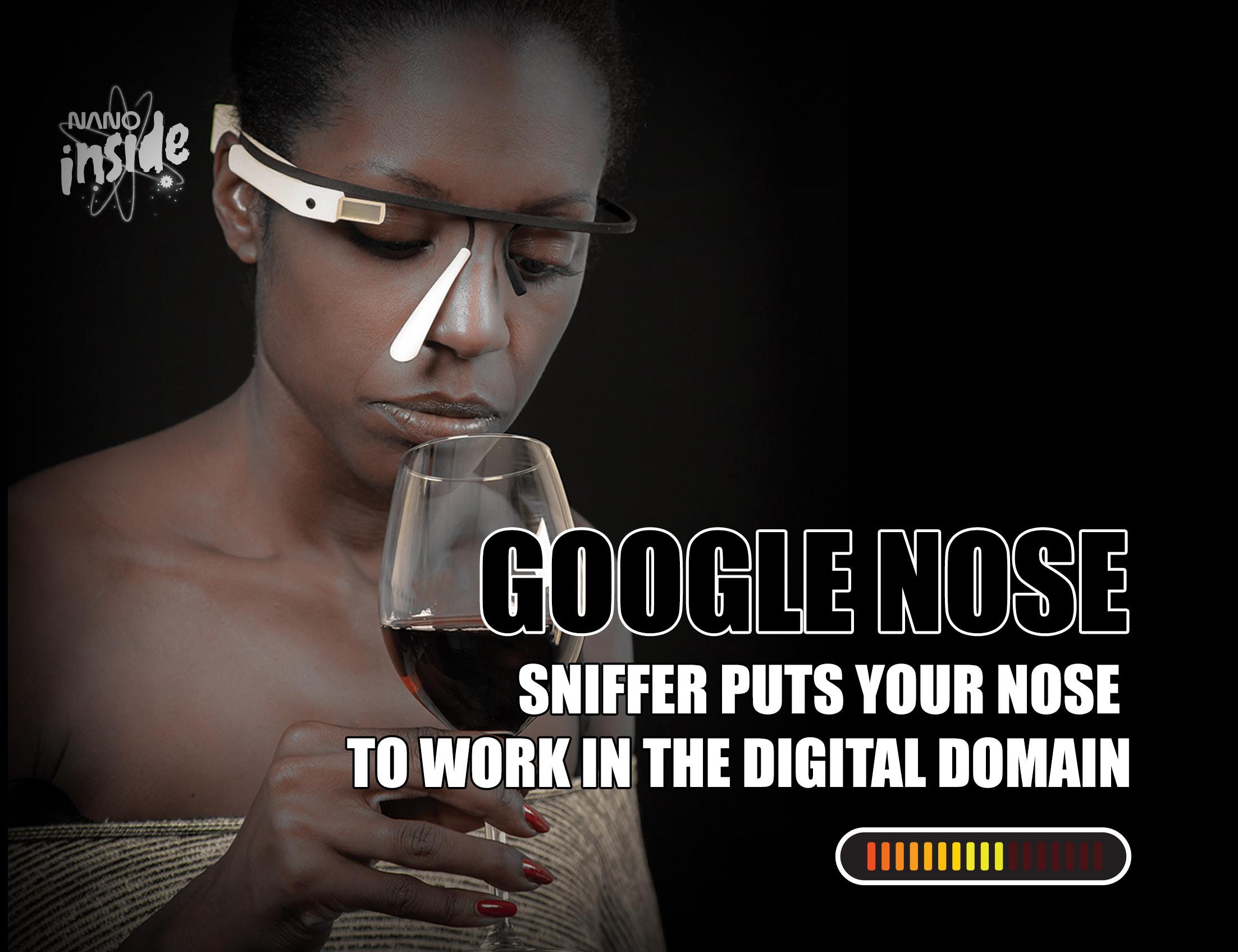 Visual of Nano Product: Google Nose