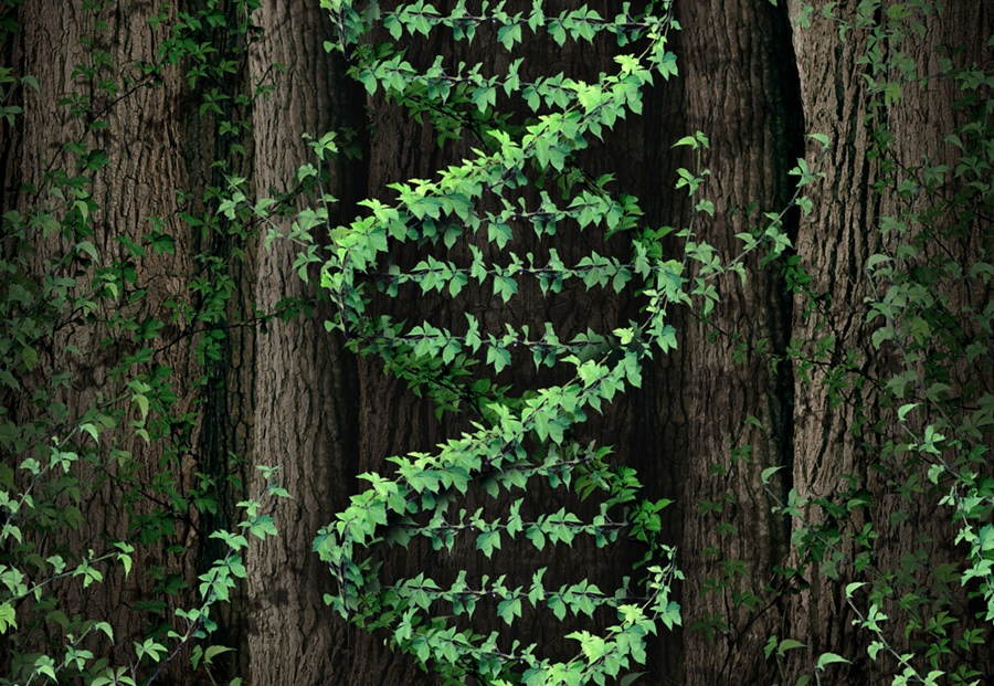 Visual of Reinventing Nature with Synthetic Biology