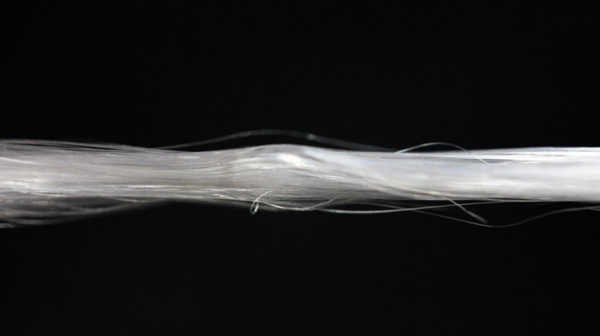 Visual of Spider Silk will be Commercialized in 2015