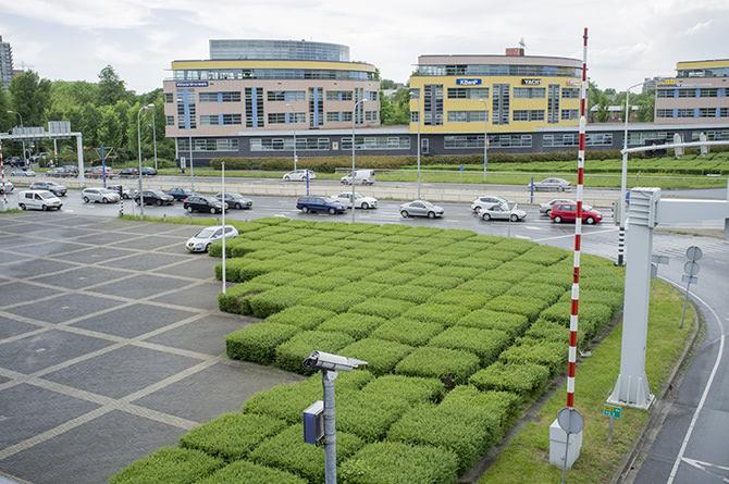 Visual of Urban Green