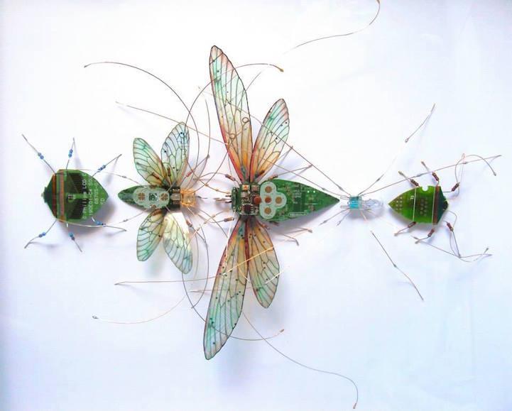 Visual of Cybernetic Bugs