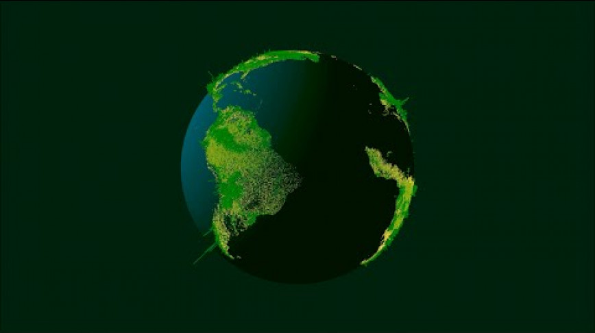 Visual of How Many Trees are There on Earth?